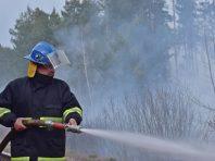 У Чорнобильській зоні триває гасіння трьох осередків пожежі – ДСНС