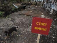 Бойовики на Донбасі мінують потенційні ділянки розведення військ