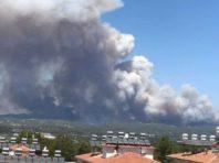 Ще один загиблий. Жертвами лісових пожеж у Туреччині стало вже чотири людини